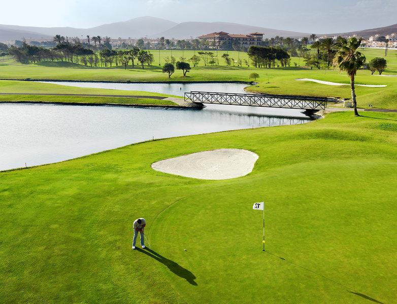 Elba Palace Golf und Vital Hotel in Caleta de Fuste, Fuerteventura F