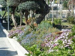 Hotel Alexander Terme Garten