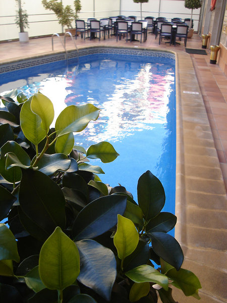 Brasil Pool