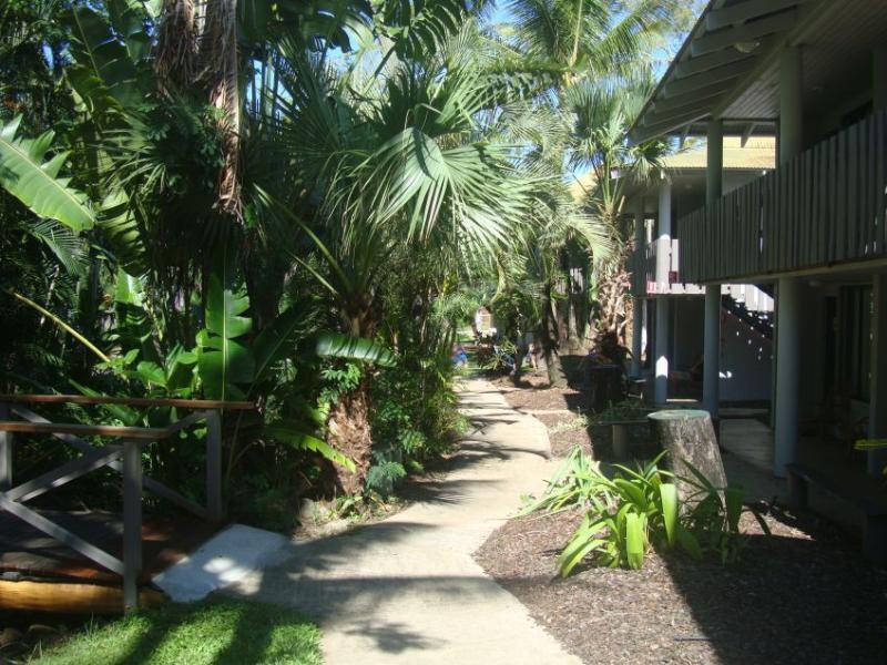 Base Backpackers Airlie Beach Garten