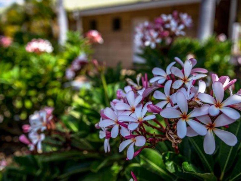 The Kimberley Grande Garten