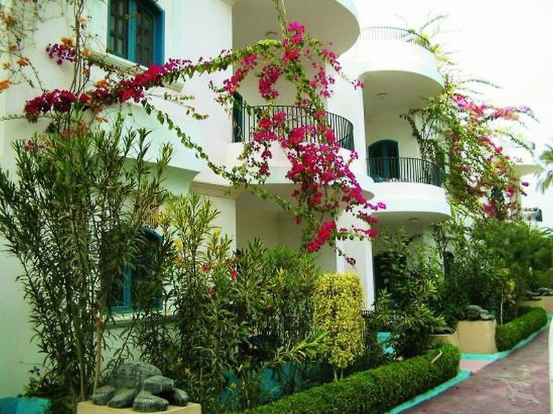 El Gezira Gardens Außenaufnahme