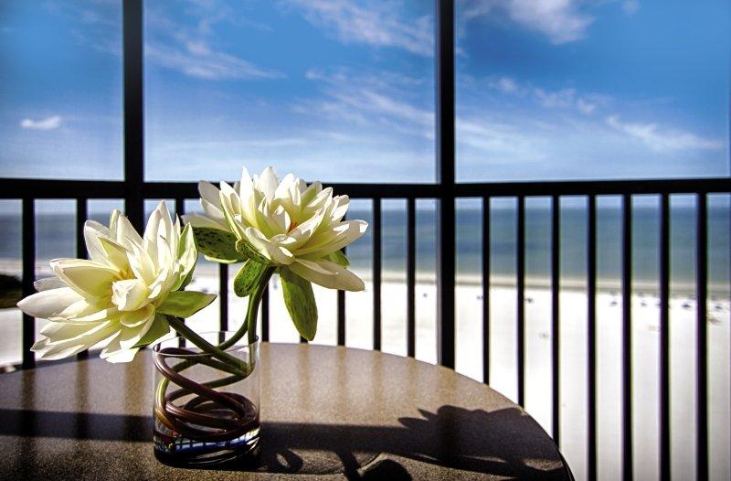 Pointe Estero Beach Resort Terrasse