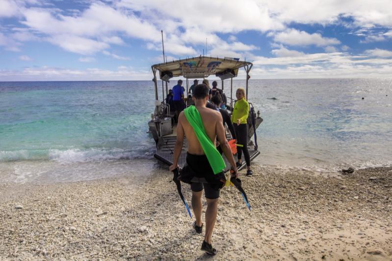 Lady Elliot Island Eco Resort Sport und Freizeit